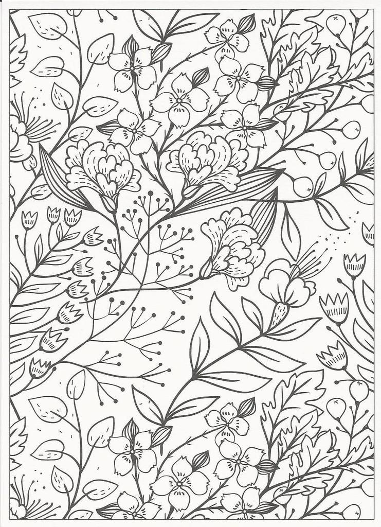 Creatief Kleuren Voor Volwassenen 20 Kaarten Meerleuks
